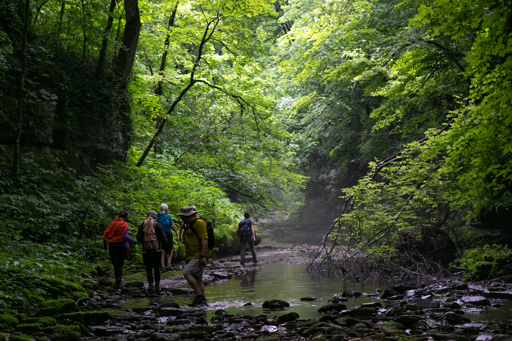 Creek Walk (photo by Ward Ransdell)